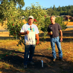President of CCC Martin Mileck poses in front of the Commonwealth Hospital Gardens orchard with the Gardens' volunteer coordinator Keith Johnson.